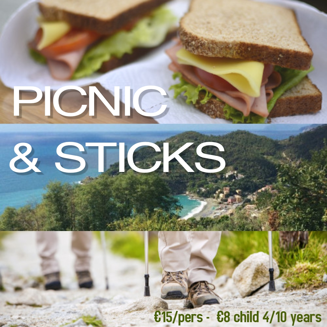picnic-sticks